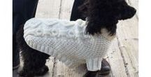 Knitted doggy clothes