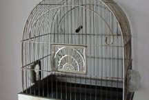 Casetta per uccellini / Gabbietta