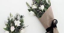 florals / flowers