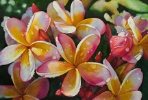 Maui, Hawaii --Aloha Love!