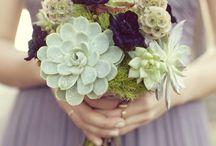 Bouquet / composizioni  di fiori, frutta, verde