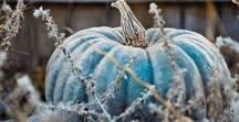 Ideias para o Dia das Bruxas   Halloween Inspiration / Ah, o outono! Folhas secas, abóboras e... Halloween!! Algumas sugestões neutras para uma decoração stylish ou mais clássica e, claro, os incontornáveis laranja e preto.