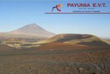 """Payunia / Esta reserva está situada a 200 Km. al sureste del departamento de Malargüe. Por sus dimensiones es la Reserva Natural más grande de la provincia de Mendoza, propuesta para ser declarada Patrimonio de la Humanidad, por la riqueza geológica que presenta. Su nombre deriva de vocablos aborígenes """"Payén"""", lugar donde existe el mineral de cobre. Presenta una de las concentraciones volcánicas más importantes y tiene los campos volcánicos de mayor concentración volcánica de América del Sur."""