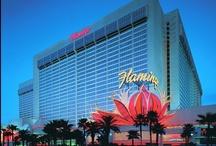 Flamingo - Las Vegas / Flamingo - Las Vegas / by Brian Harris Travel