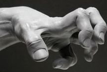 Anatomy - Hands