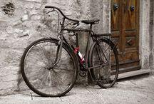 Vintage bike style