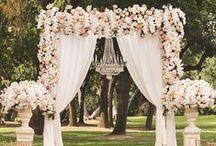 Wedding Decor/Reception / An inspirational boar for wedding decor/reception