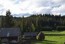 Les Apuseni, l'une des plus belles régions de Roumanie / Découverte de la région des Apuseni, en Roumanie. On retrouve de magnifiques grottes et la Pension Scarisoara. Les articles sont complets et riches en informations.