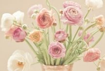 Flowers Holic ⚘ / by Siri Pranee