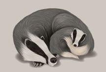 Tuts :: Illustrator / by mrs p design