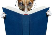 books & bookshelves / by debra gentosi-roberts