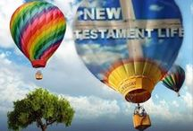 New Testament Life
