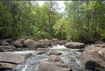Our Backyard / Discover the river and natural whirlpools in our backyard.