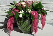 Bloemcreaties / Bloemen fleuren de omgeving op. Bekijk de bloemcreaties van stylester en laat je verrassen. Ook interesse? Neem gerust contact met mij op.