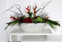 Zakelijke bloemcreaties / Bloemcreaties voor zakelijke klanten van stylester. Het decoreren van winkels, kantoren en restaurants.