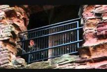 """Fantasmas / Los fantasmas (del griego φάντασμα, """"aparición""""), en el folclore de muchas culturas, son supuestos espíritus o almas desencarnadas de seres muertos (más raramente aún vivos) que se manifiestan entre los vivos de forma perceptible (por ejemplo, tomando una apariencia visible, produciendo sonidos o aromas o desplazando objetos —poltergeist—), principalmente en lugares que frecuentaban en vida, o en asociación con sus personas cercanas. Constituye uno de los tipos más conocidos de superstición."""