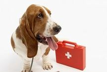 Pet Care Tips / by Mesa Veterinary Clinic & Paws N' Hooves Mobile Veterinary Services