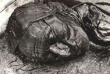 Momias / Se denomina momia al cadáver de un ser humano o de un animal que, mediante embalsamamiento o por circunstancias naturales, se ha mantenido en aceptable estado de conservación mucho tiempo después de la muerte. Existen regiones y lugares que por sus características de sequedad extrema, frialdad, alcalinidad, aislamiento de la intemperie o de los microorganismos, causan que un cadáver se momifique en lugar de que se degrade por completo.