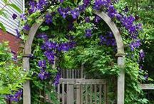 """Spring Fever / Spring is coming! Fence brainstorming and """"just for fun"""" ideas to turn your yard into an enjoyable, relaxing and useful environment."""
