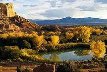 Breathtaking Beauty of NM