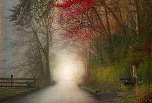 Fog / mystery and beauty of fog... / by Pawel Dolatowski