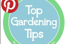 Top Gardening Tips / Grow your own food with these helpful gardening tips, tricks and ideas!