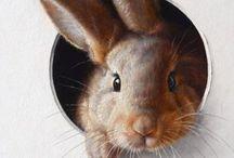 ANIMAL : Bunny wabbit / #bunny #rabbit #pets #bekindtorabbits #againstanimaltesting / by Johana Ufa