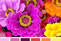 Color palettes / Color inspiration for art projects.