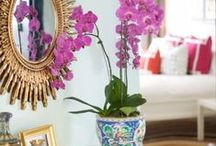 Decorating with Orchids and Tropical Plants / Inspiration for decorating with Orchids and tropical plants.