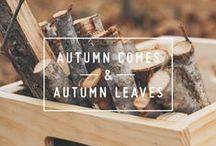 > Autumn☆
