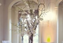 Weddings - Branches