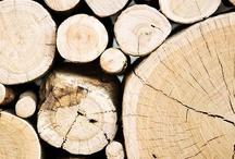 Wood (y woodpecker!)