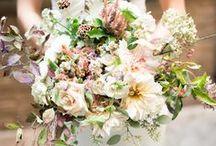 Ahhhhh flowers... / Maravillosa naturaleza, podemos decir tantas cosas con flores. // Wonderfull nature. We can say so much with flowers.