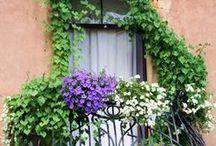 OMA | balcony