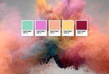 color palette / colori, PANTONE e accordi cromatici