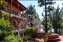 Hotel Villalba y su flora / La primavera se adelantado regalando una floracion impresionante
