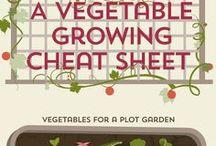 Gardening Tips & Knowledge