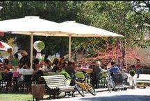 Lisbon - Jardim da Estrela / A garden built in the style of English gardens of romantic inspiration.