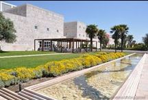 Lisbon's Museums