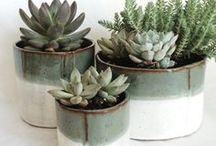botanicals / flower arrangement ideas plus bouquets + houseplants