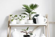 photography: homewares / Beautiful household items like ceramics, wool blankets and dinner plates. Most items added to this board are handmade home goods with beautiful product photography.