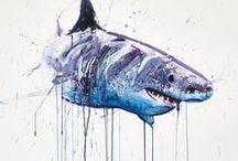 Shark Arts & Crafts