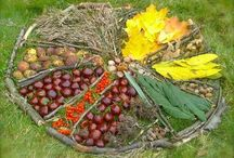 EYFS - Loose Parts
