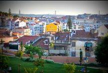 Cerca da Graça Garden / Gardens in Lisbon