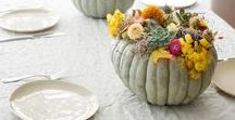 Thanksgiving Centerpieces / Need some ideas on how to impress your guests this Thanksgiving?  Club Botanic offers decorating ideas from our very own arrangements.