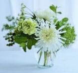 Green Floral Arrangements / Flower arrangements for St. Patrick's Day. Green and white flower arrangements.