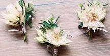 Blushing Bride Boutonnieres / Boutonniere ideas using Blushing Bride blooms.