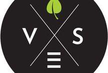 The VES Brand