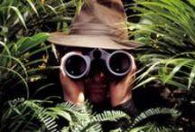 GENRE: SPY or ACTION