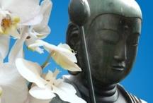 Creagaat's cards - Buddha / Mooi als coachingskaart, ter ondersteuning of zomaar voor de liefhebber. Buddha cards for more than one occasion. Kaartje2go - creagaat boeddha
